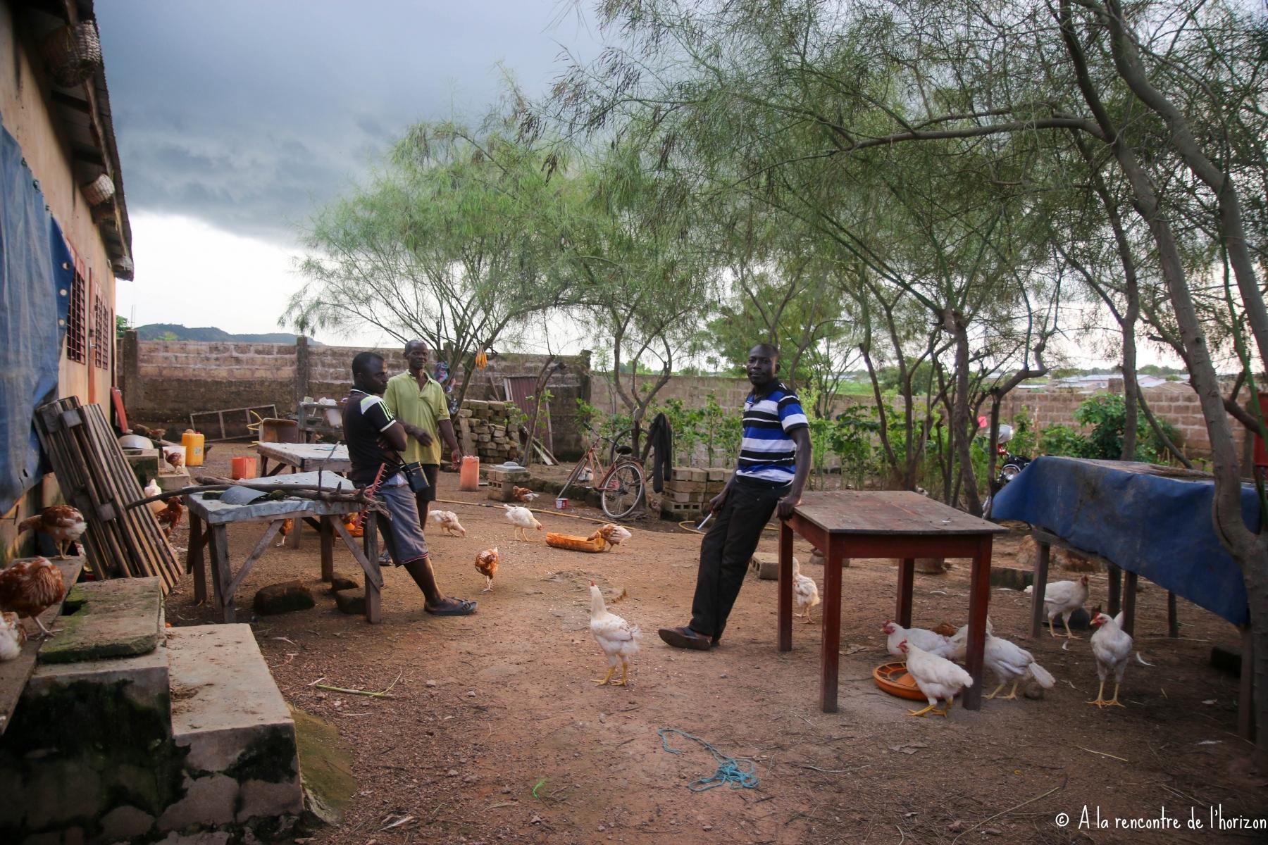 BENIN - FERME AVICOLE DE L'ONG JURA AFRIQUE
